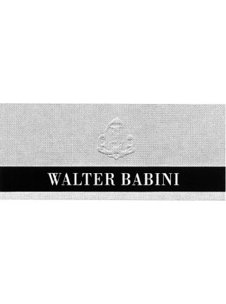 Walter Babini (Италия)